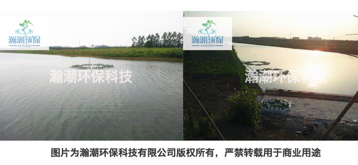 微山湖插圖.jpg