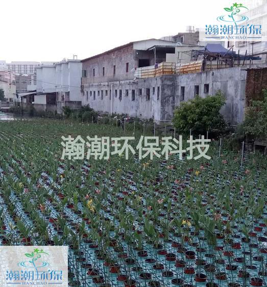 汕頭峽山C.jpg